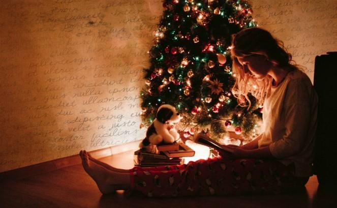 adult-christmas-christmas-decorations-936700(1).jpg